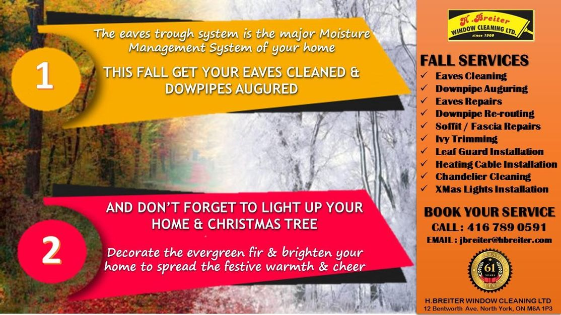 FALL SERVICES - EAVES & DOWNPIPE CLEANING